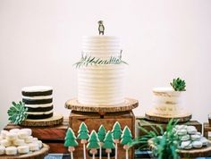 First birthday camping cakes | Wedding & Party Ideas | 100 Layer Cake
