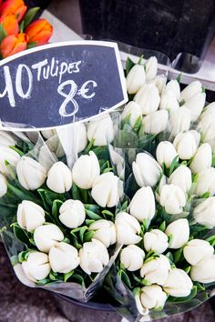 Tulips for sale on rue Cler in Paris