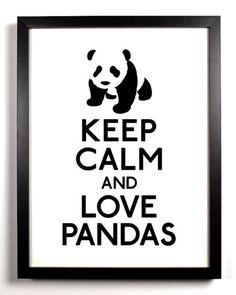AOII Panda Love!
