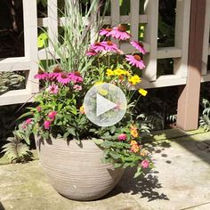 Create a meadow in a container! Watch our tips here: http://www.bhg.com/videos/m/85235228/prairie-container-garden.htm?socsrc=bhgpin082314prairiecontainergarden