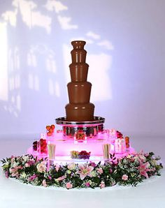 we WILL have a chocolate fountain! Chocolate Fountain Rental, Chocolate Fountain Machine, Chocolate Fountain Recipes, Chocolate Fountains, Chocolate Recipes, Luxury Chocolate, Pink Chocolate, Chocolate Shop, Best Chocolate