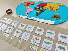 Animales y Geografía -- Montessori en casa