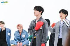 030620 nct 127 on weekly idol Weekly Idol, Nct Doyoung, Winwin, Say Hi, Taeyong, Jaehyun, Nct 127, Nct Dream, Boy Groups