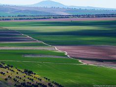 Castilla la Mancha. España