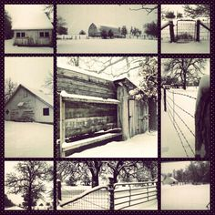 Brr baby it's cold outside! #winterfarm #firstsnow #SWMO #cameranut