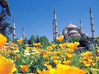 Праздники в Турции можно разделить на гражданские и религиозные. Первые ознаменовывают наиболее заметные вехи кемалистской революции, вторые...