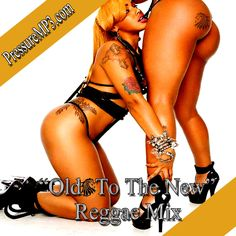 Old To The New Reggae Party Classics Edition Mixtape Collectors CD
