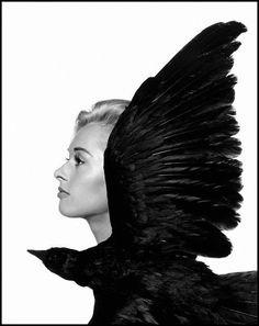 "Philippe Halsman, Tippi Hedren, main actress in British film director Alfred Hitchcock's movie ""The Birds"" (1962)"
