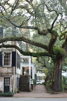Sights and Spirits in Historic Savannah: it's resort season, and my favorite destination for some sunshine and change of scenery is Savannah, Georgia. Savannah Georgia Travel, Visit Savannah, Savannah Chat, Savannah Georgia Homes, Savanna Georgia, Georgia Usa, The Places Youll Go, Cool Places To Visit, Places To Go