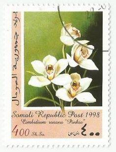 Somali Republic Series: Orchids (1998)