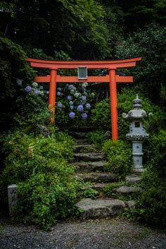 Torii desu, un Japan