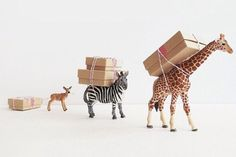 these animals carrying gifts is really sweet! It's like two gifts