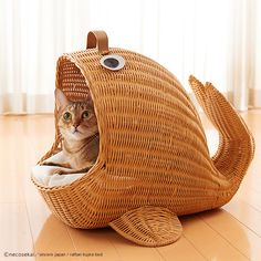 Some of the best cat beds and cat houses for the most cat fun and cat sleep. The nicest cat stuff and the best stuff for cats. These cute cats deserve nice cat beds Wilde Hilde, Animals And Pets, Cute Animals, Cat Cave, Miniature Dogs, Cat Room, Pet Furniture, Cat Sleeping, Pet Accessories