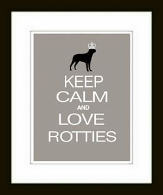 I adore Rotties, and always have. <3 I hope some day another beautiful Rottweiler finds their way to my heart.