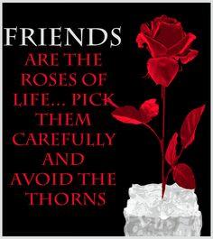 Decent Image Scraps: Friendship 1