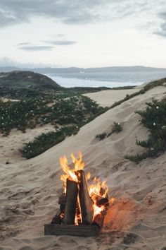 """imbradenolsen: """" camp fire at the beach in Monterey """""""