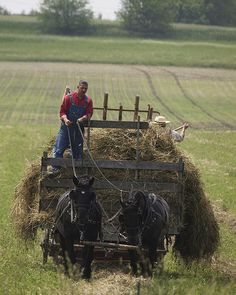 Hay Harvest | Flickr - Photo Sharing!