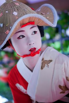 floating-flowers:    la-femme-sans-vanille:    geisha-licious:    maiko Kyouka    this. this this this.    The photographer needs an award <3 It's perfect!