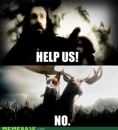 I think gumpy cat's response was even nicer than Thranduil's.