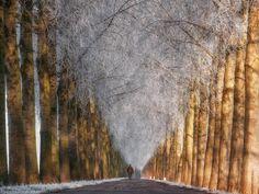 Cold Row White V_Netherlands by Lars van de Goor on 500px