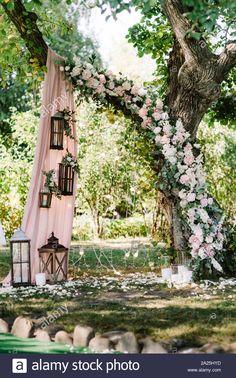 Elegant Backyard Wedding, Backyard Wedding Decorations, Patio Wedding, Outside Wedding, Tree Wedding, Wedding Ceremony, Small Elegant Wedding, Garden Wedding Ideas On A Budget, Small Wedding Decor