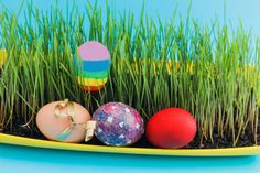 shot of group hand decorated easter eggs in front of green grass
