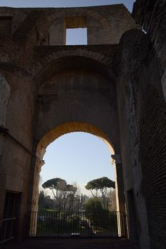 View of the Palatine from the Coloseum