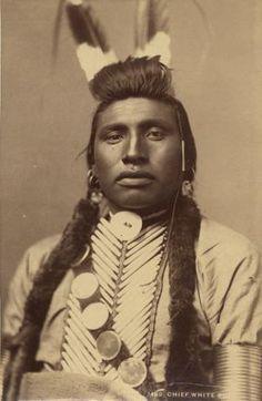 White Bull - Crow - 1883