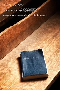 Psalm 119:89 Your word, O LORD, is eternal; it stands firm in the heavens.