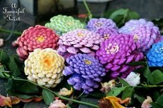 Pine cone Zinnias  http://afancifultwist.typepad.com/a_fanciful_twist/2015/04/lets-make-zinnia-flowers-from-pine-cones.html