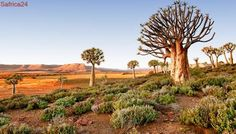 Celebrate tourism month in the Northern Cape