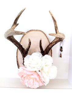 Antlers. DIY idea for mine.