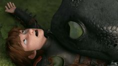 how to train your dragon 2 -Hiccup and Toothless