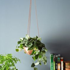 Handmade Hanging Copper Bowl - Large - Unique Modern Furniture - Dot & Bo