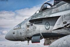 Hornets from 409 Sqn await their next flight Air Force Aircraft, Navy Aircraft, Aircraft Photos, Fighter Aircraft, Fighter Jets, Military Jets, Military Aircraft, Military Life, Zeppelin