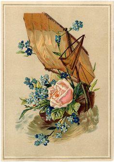Antique Nautical Floral Image! - The Graphics Fairy