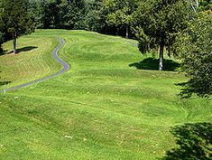 The Serpent Mound is the largest effigy mound in the world. While there are several burial mounds around the Serpent mound site, the Serpent site does not contain any human remains. It was not constructed for burial purposes.