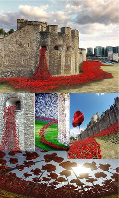 Hauntingly beautiful WWI tribute to the fallen.