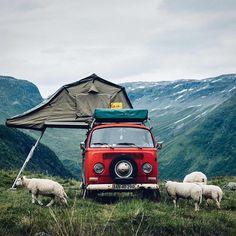 Let's Go Camping! - Outdoor Camping Tips Volkswagen Bus, Vw Bus T2, Vw T1, Kombi Trailer, Vw Caravan, Kombi Camper, Travel Camper, Vw Bus Camping, Camping Life