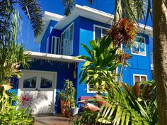 Welcome to our happy beach shack!  Dicky Beach Brisbane Australia Airbnb
