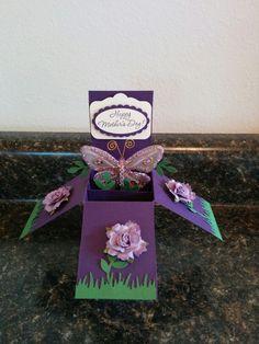 Elegant eggplant card in a box