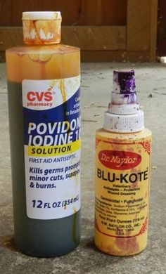 Chicken medicine chest list. This blog has a lot of info about how to treat sick chickens.