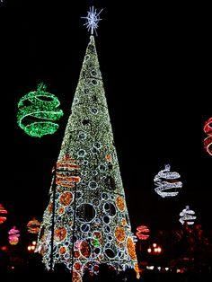 Ya es #Navidad en #Granada. El frío del recién estrenado invierno se combate con el calor de los granadinos en el ambiente festivo navideño.