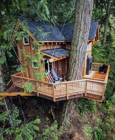 By treehouse living, building a treehouse, building a hous Treehouse Masters, Treehouse Living, Treehouse Ideas, Beautiful Tree Houses, Cool Tree Houses, Tree House Plans, Tree House Designs, Unique Trees, House Goals