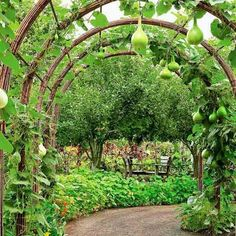 24 Easy DIY Garden Trellis Ideas & Plant Structures - A Piece of Rainbow Vegetable Garden Design, Diy Garden, Shade Garden, Garden Projects, Edible Garden, Diy Trellis, Garden Trellis, Trellis Ideas, Screen Plants