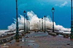 alexandria in winter