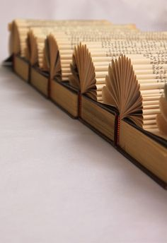 Excellent Book Art Border