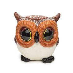 Big Sky Carvers Owl Cookie Jar Big Sky http://www.amazon.com/dp/B00MLJFQ5M/ref=cm_sw_r_pi_dp_kGg0ub150YRYM