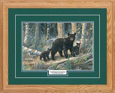 Northern Promotions Framed Art - Woodland Lessons by Terry Doughty | Bass Pro Shops