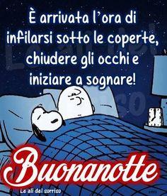 È arrivata l'ora di infilarsi sotto le coperte, chiudere gli occhi e iniziare a sognare! Buonanotte #buonanotte snoopy